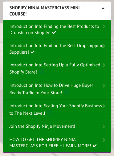 Kevin David Shopify Course